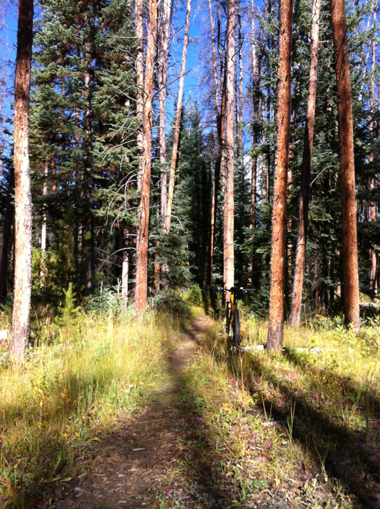 Mountain biking in Grand Lake?-imageuploadedbytapatalk1346783773.983876.jpg