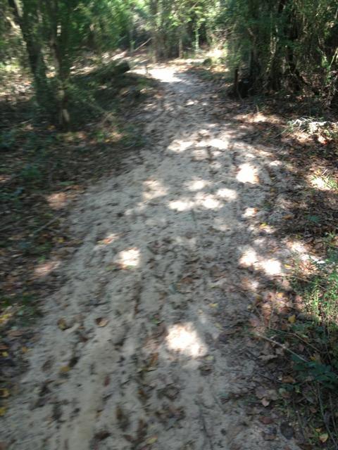 Sand Drifts-imageuploadedbytapatalk1351376089.084150.jpg