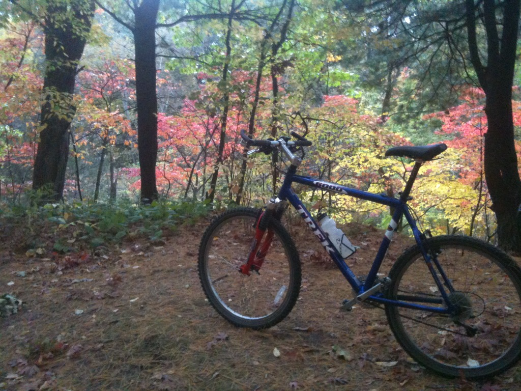 29ers In The Fall-imageuploadedbytapatalk1352613161.899035.jpg