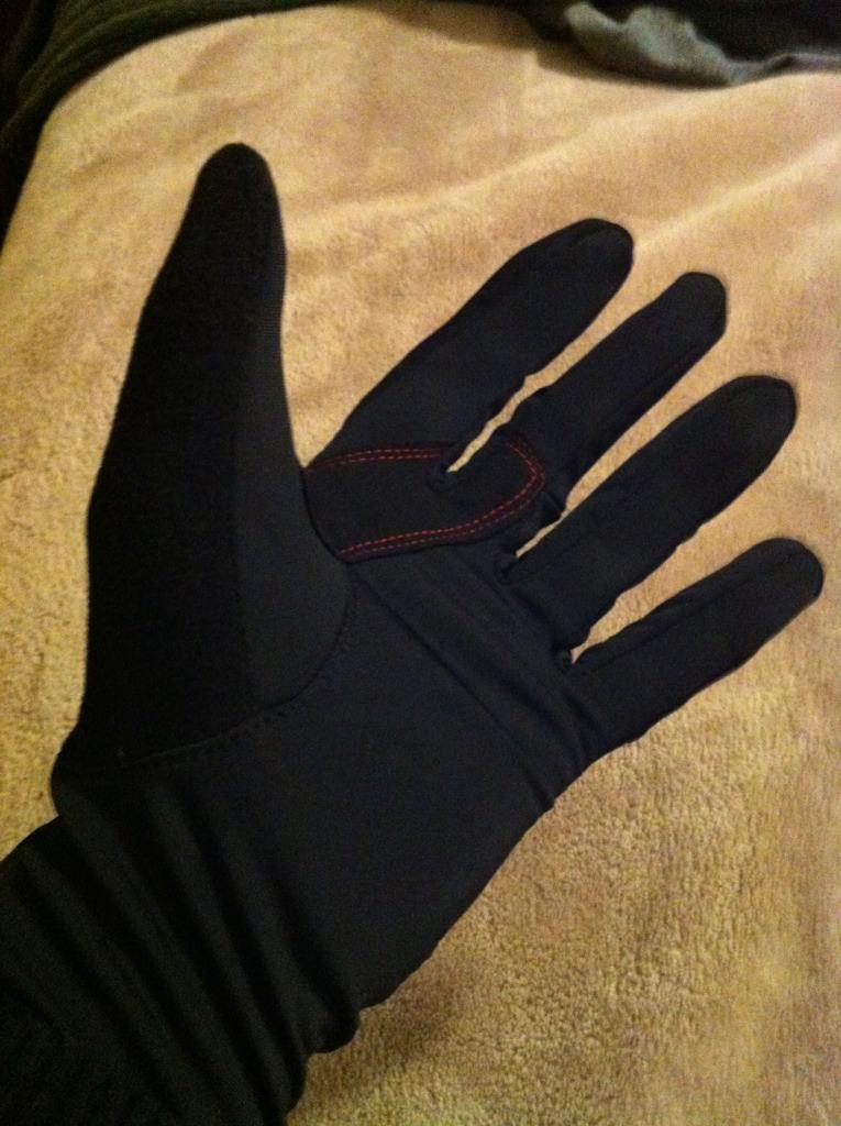 Winter gloves?-imageuploadedbytapatalk1353038814.487521.jpg