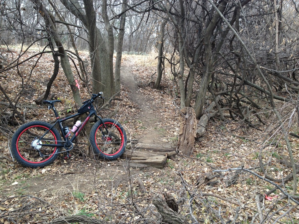 official global fatbike day picture & aftermath thread-imageuploadedbytapatalk1354377779.046354.jpg