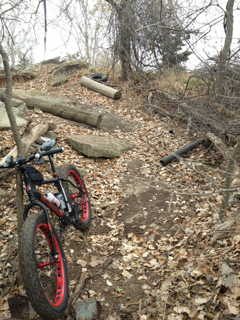 official global fatbike day picture & aftermath thread-imageuploadedbytapatalk1354377802.349734.jpg