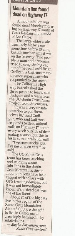 So you're a cougar and you need to cross the highway-imageuploadedbytapatalk1358102510.020307.jpg
