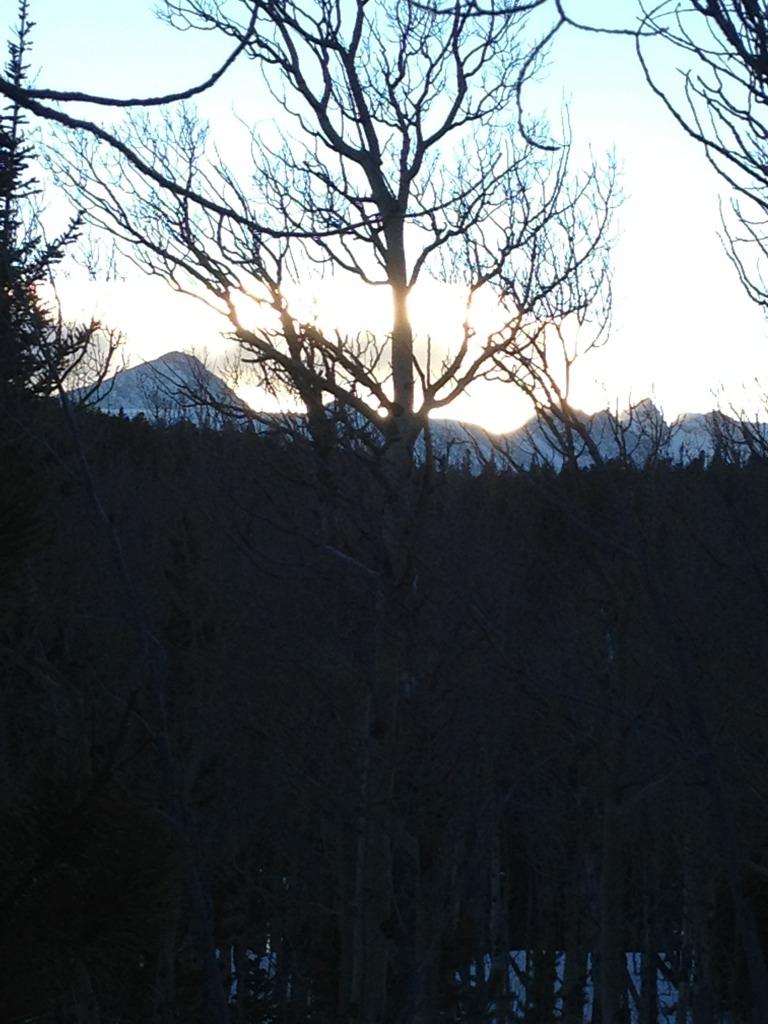 Who's biking this winter and not skiing?-imageuploadedbytapatalk1358103858.211426.jpg