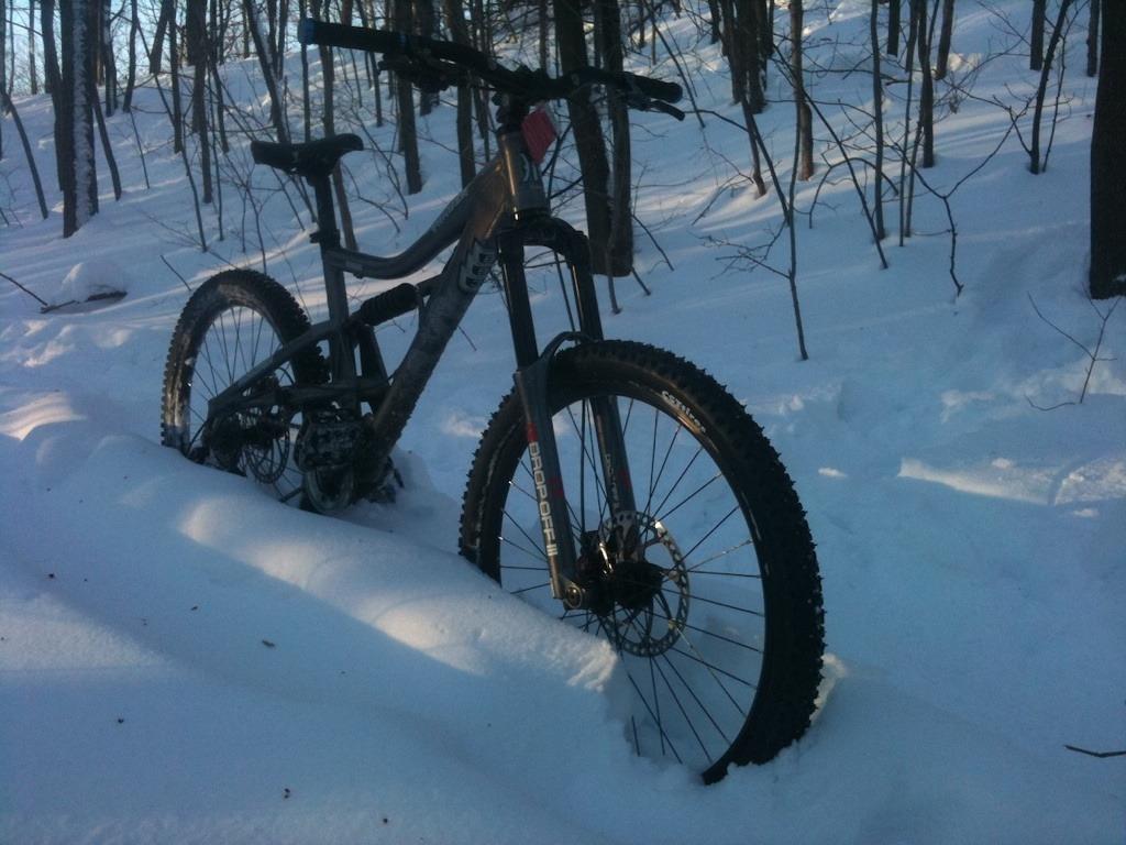 Snow!-imageuploadedbytapatalk1358470741.306866.jpg