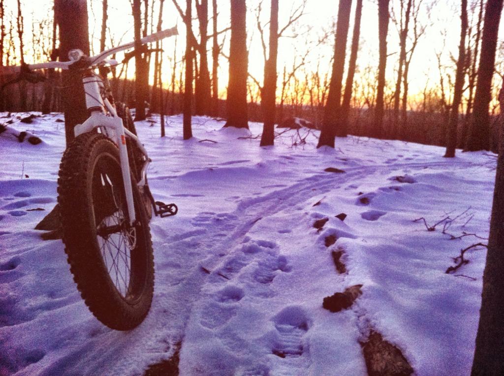 Fat Bike Friday- Photo Comp-imageuploadedbytapatalk1358567313.178928.jpg