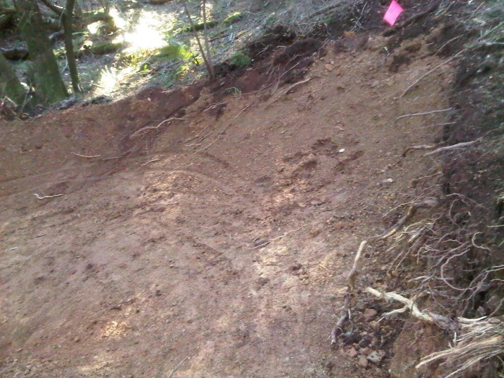 Tamarancho flow trail poachers. The flow trail is closed!-imageuploadedbytapatalk1360479846.038493.jpg