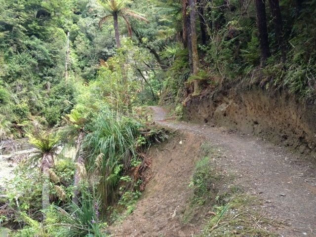 New Zealand in March-imageuploadedbytapatalk1362177246.745905.jpg