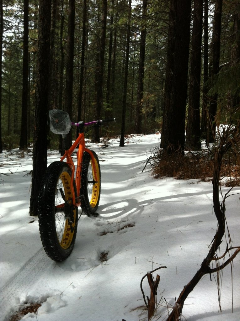 Any fatbikers in No Cal....-imageuploadedbytapatalk1362624882.294701.jpg