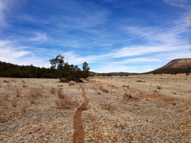 The NM Trail Pix Thread-imageuploadedbytapatalk1363398414.632845.jpg