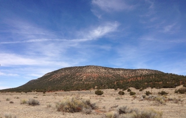 The NM Trail Pix Thread-imageuploadedbytapatalk1363398479.149288.jpg
