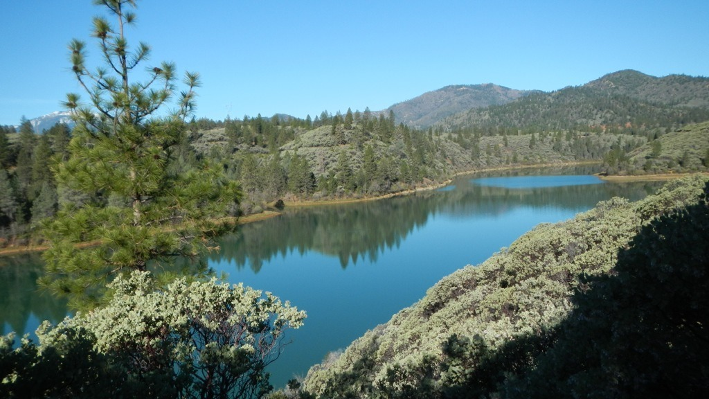 It's Spring in Northern California - and green for a limited time only!-imageuploadedbytapatalk1364163422.080511.jpg