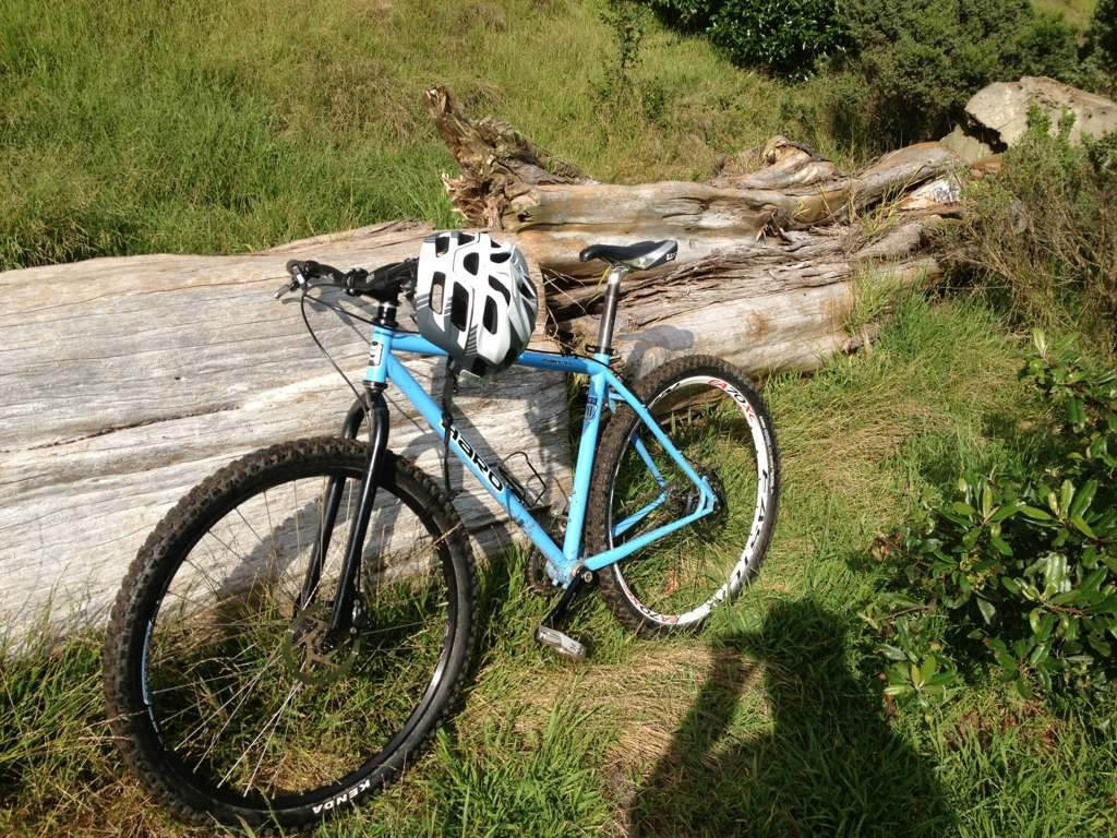 Post Pictures of your 29er-imageuploadedbytapatalk1364256576.305596.jpg
