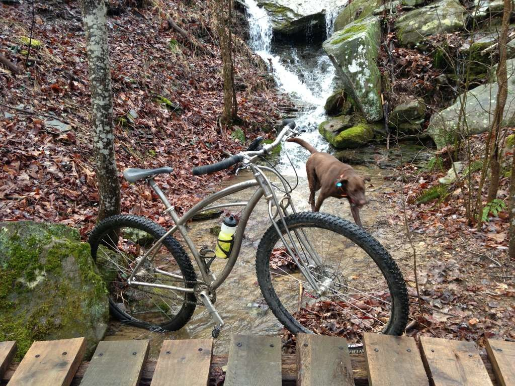Post your dog with your single speed-imageuploadedbytapatalk1365468420.236786.jpg