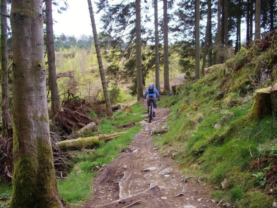 Scotland in April...-imageuploadedbytapatalk1365537726.719221.jpg
