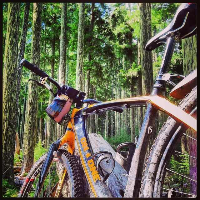 What should we ride in Oakridge?-imageuploadedbytapatalk1367771777.784929.jpg