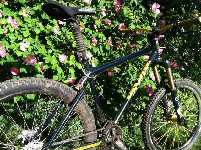 On One Bike pictures......-imageuploadedbytapatalk1369448451.826782.jpg