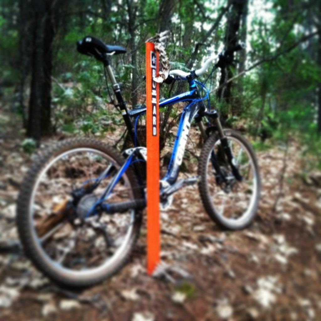 Bike + trail marker pics-imageuploadedbytapatalk1371277359.082543.jpg