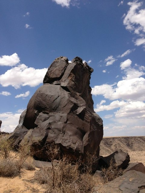 The NM Trail Pix Thread-imageuploadedbytapatalk1371480213.607472.jpg