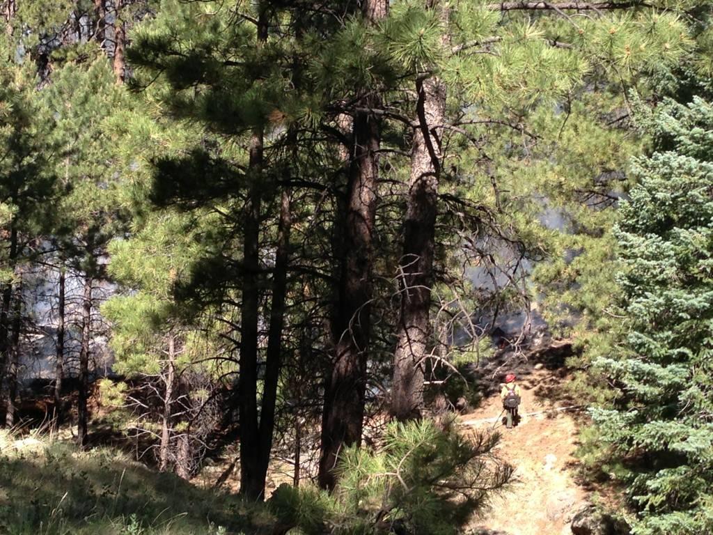 Ricochet Trail - Flagstaff-imageuploadedbytapatalk1372014927.621368.jpg