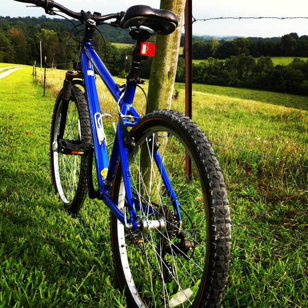 Bike Pics!-imageuploadedbytapatalk1375528176.444080.jpg