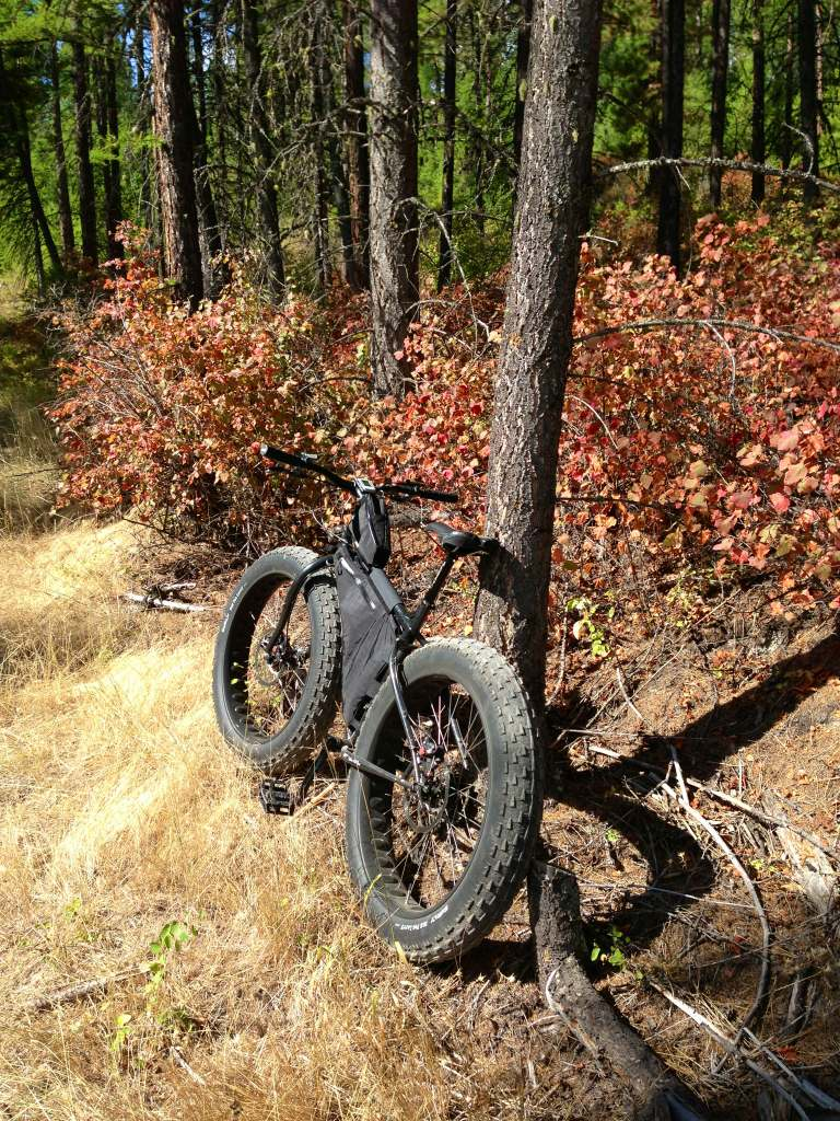 The Labor Day Weekend Fat-Bike Peace Talks-  Photo Thread-imageuploadedbytapatalk1378000588.581001.jpg