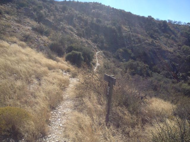 AZT Reavis Canyon (aka Picketpost North) trail work days... NEED VOLUNTEERS!!-imageuploadedbytapatalk1381952949.320493.jpg