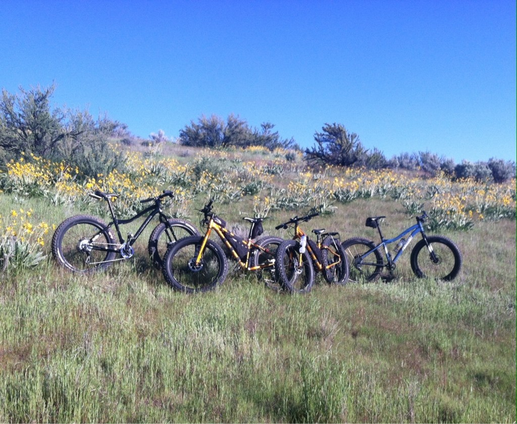 Where are the fat bikes in Boise-imageuploadedbytapatalk1400213838.225765.jpg