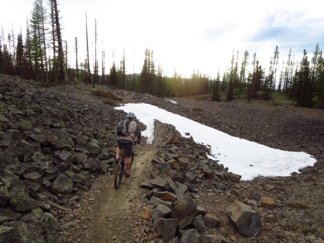 Trail Conditions - Red Devil Loop and/or #2 Canyon (Cashmere / Wenatchee)?-imageuploadedbytapatalk1400826859.250292.jpg
