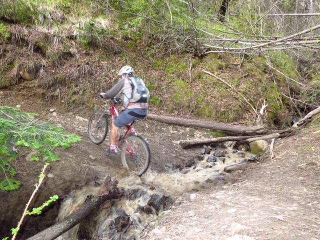 Trail Conditions - Red Devil Loop and/or #2 Canyon (Cashmere / Wenatchee)?-imageuploadedbytapatalk1400826885.344866.jpg
