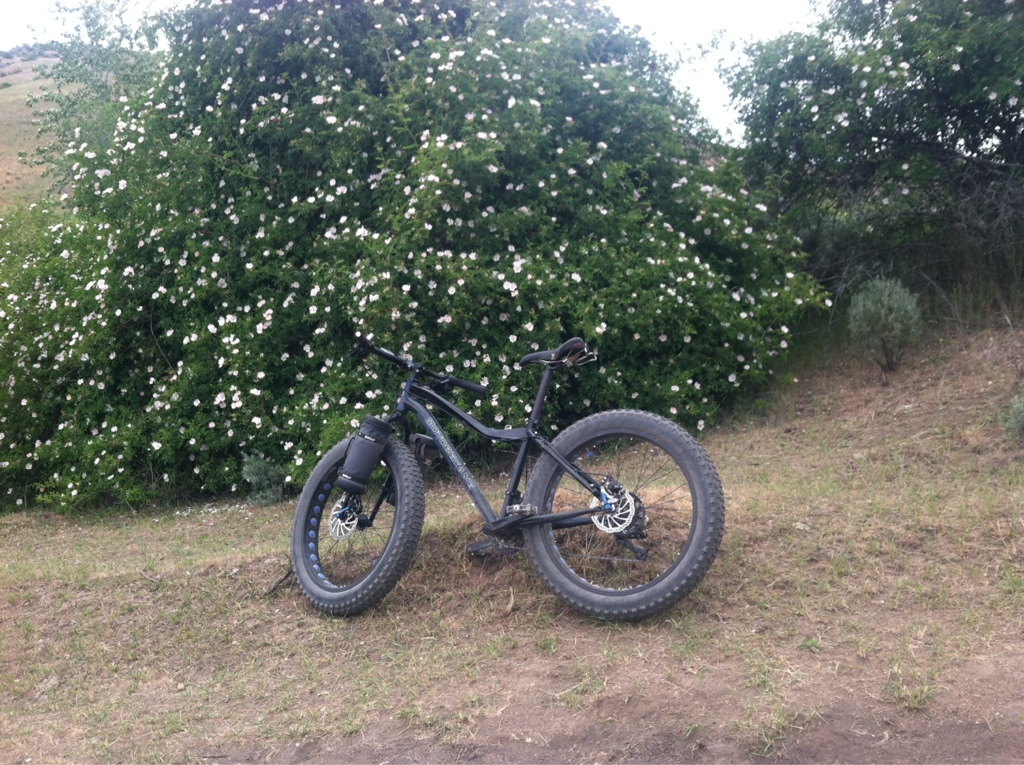 Where are the fat bikes in Boise-imageuploadedbytapatalk1403014650.176248.jpg