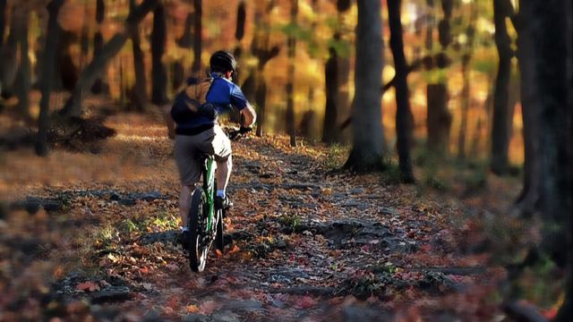 Your Best MTB Pics with the iPhone-imageuploadedbytapatalk1413260246.396606.jpg