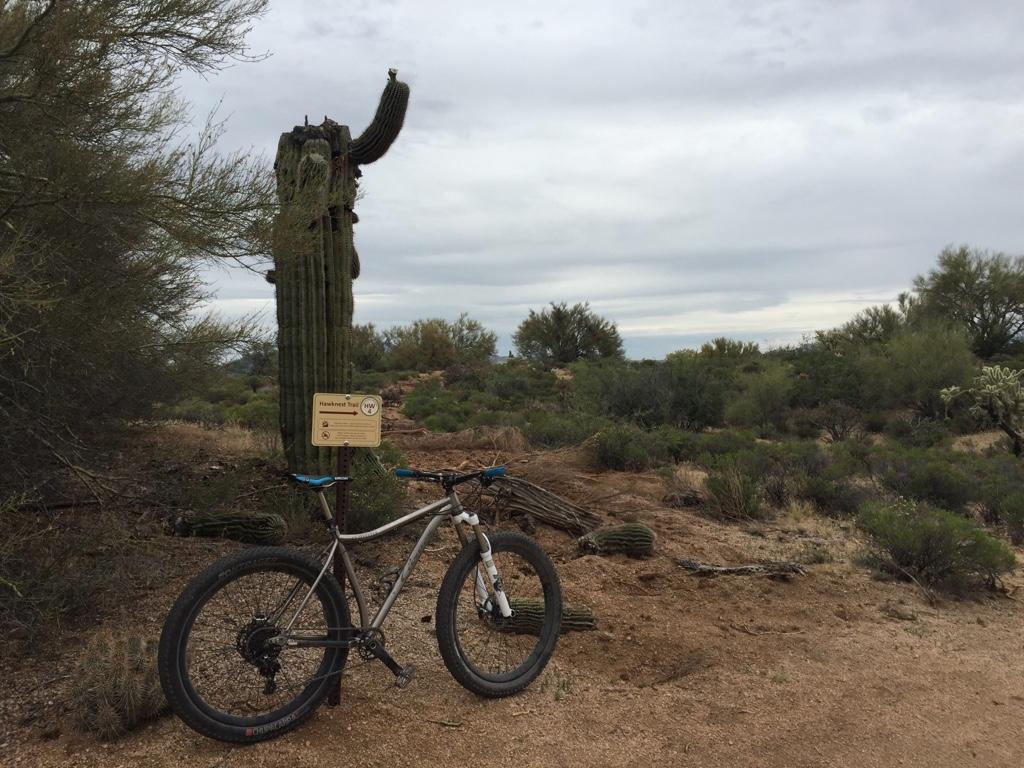 Bike + trail marker pics-imageuploadedbytapatalk1440889994.092741.jpg