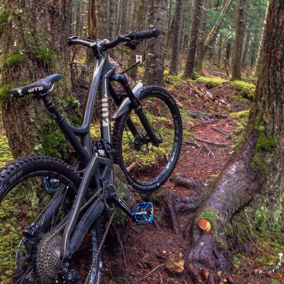 What is missing from Anchorage trails?-imageuploadedbytapatalk1457062588.542969.jpg
