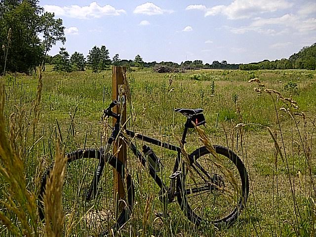 Bike + trail marker pics-img-20120712-00336.jpg