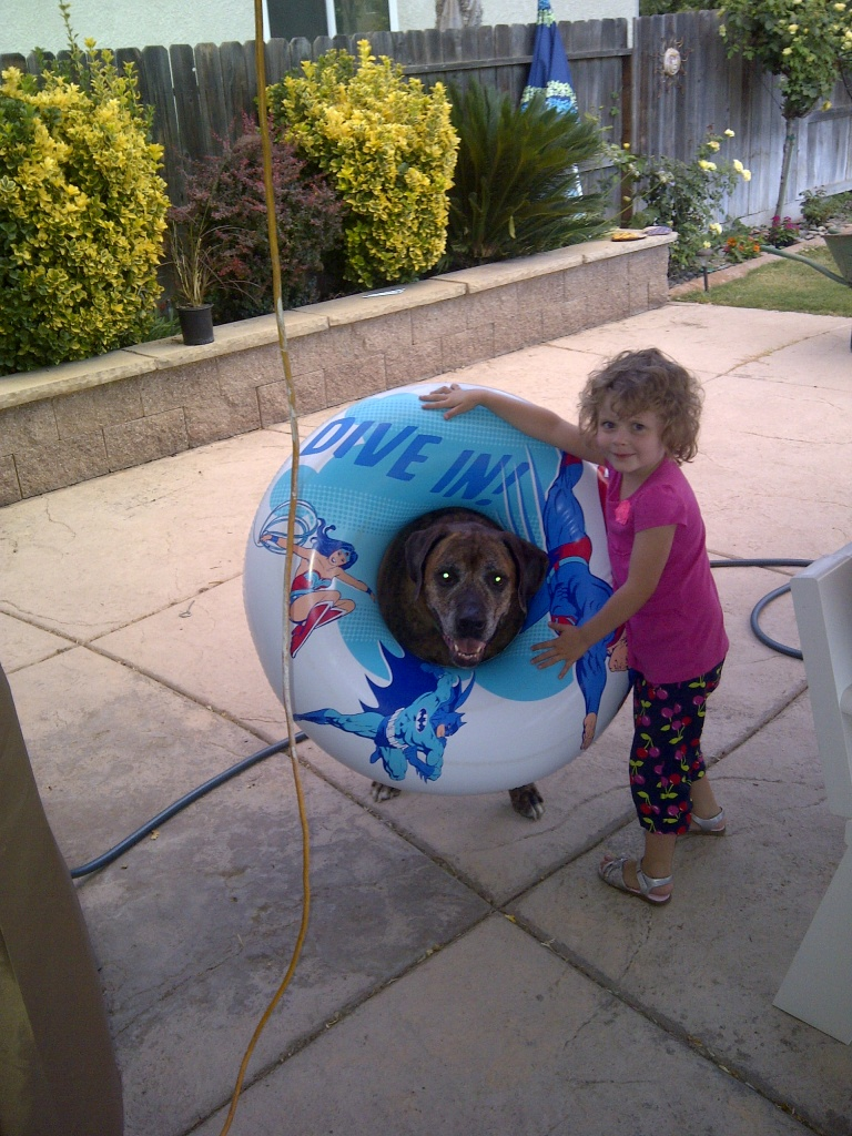 Dogs are awesome!-img-20130807-00289.jpg