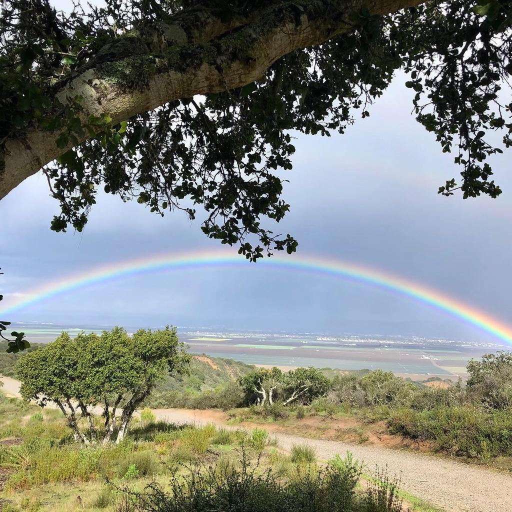 Feb 1-3, 2019 Weekend Ride and Trail Report-img-4365.jpg