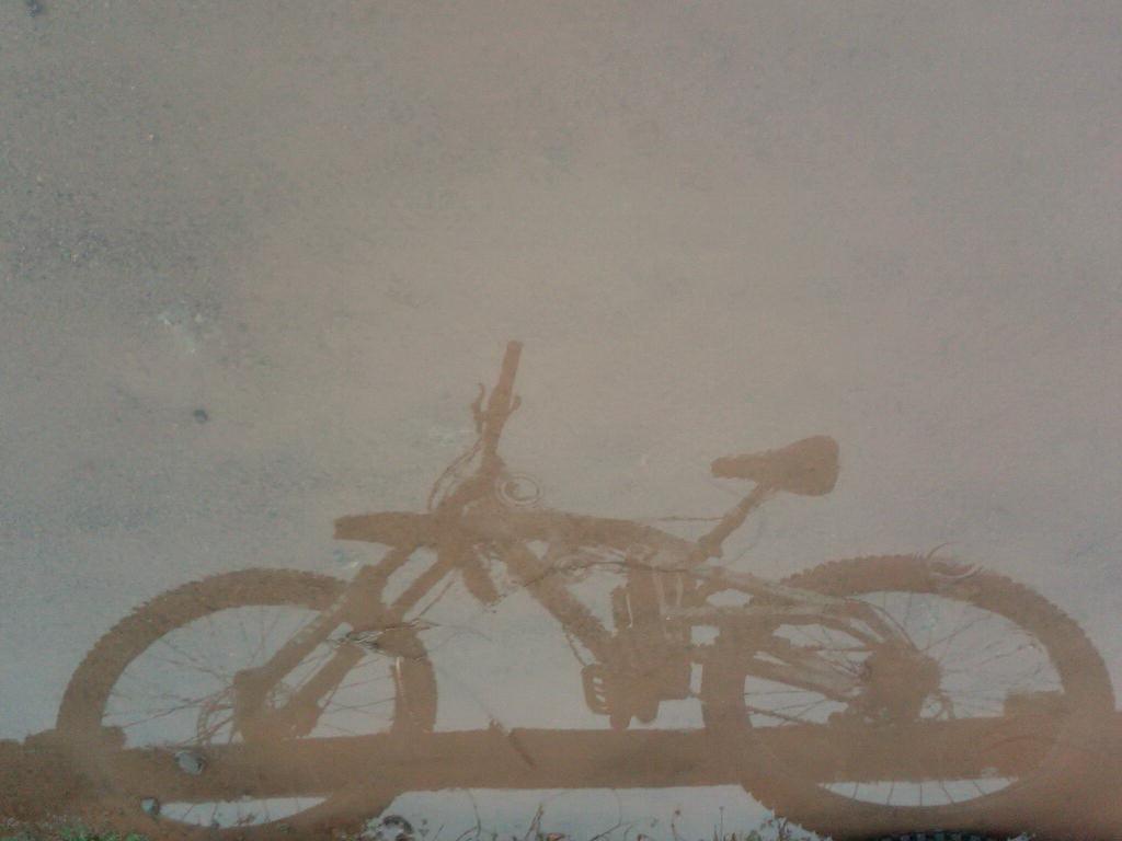Photo Assignment: Rain-img00015-20101217-1247.jpg