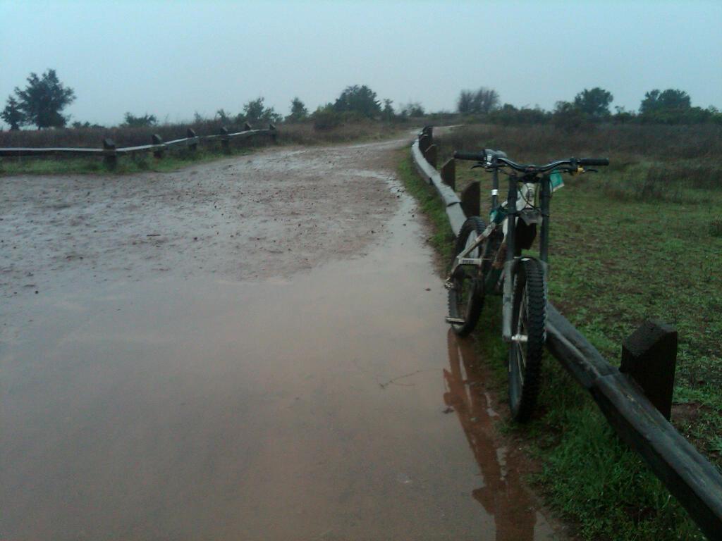 Photo Assignment: Rain-img00017-20101217-1248.jpg