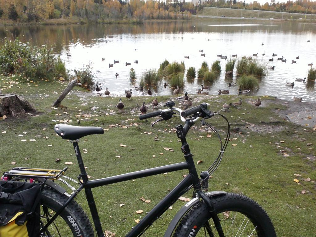 Daily Fat-Bike Pic Thread - 2012-img00119.jpg