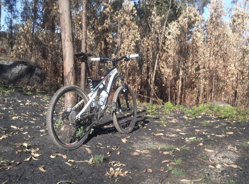 Official Specialized Camber Thread-img276.jpg