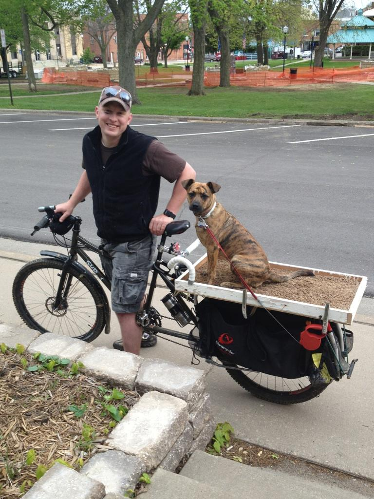 I want a dog-img959173.jpg