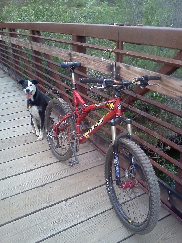 bike +  bridge pics-img_0006.jpg