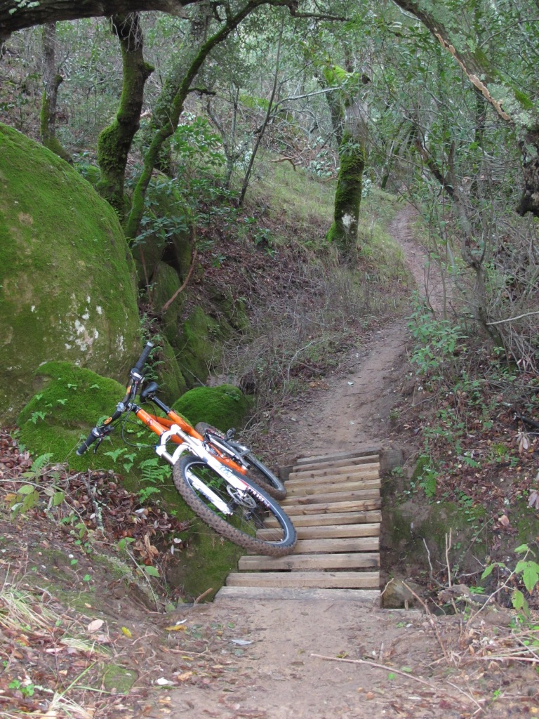 Found some new trails today-img_0011.jpg