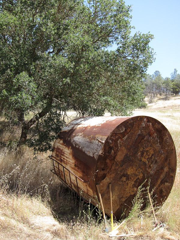 Henry W Coe Trail Work 2nd Saturday June 12 White Tank (Gibbon)-img_0016.jpg