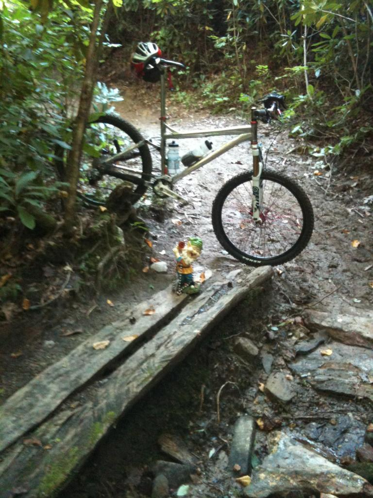 Adventures with the Pisgah Gnome-img_0024.jpg