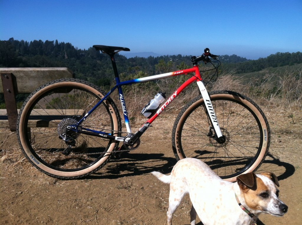 whats your steel 29er set up!-img_0027.jpg