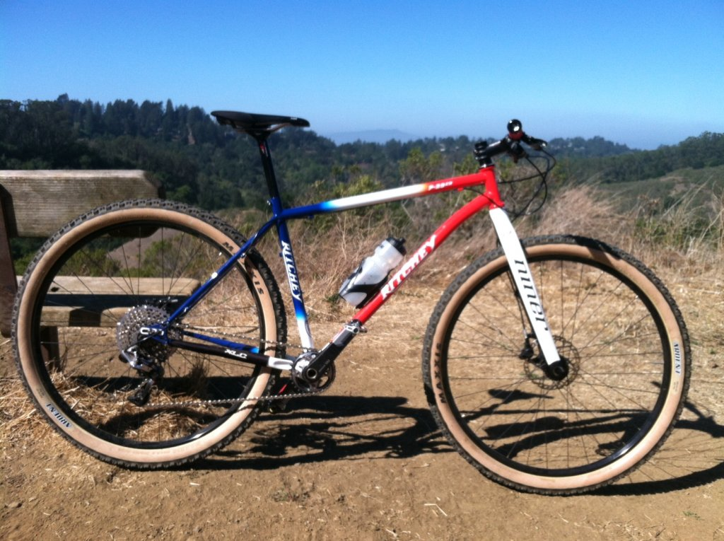 New Ritchey 29er-img_0028.jpg