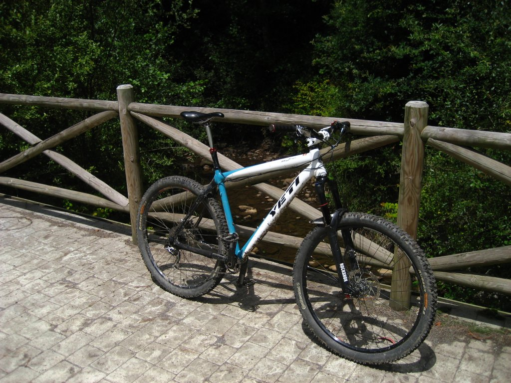 AM-Hardtail Gallery-img_0044.jpg