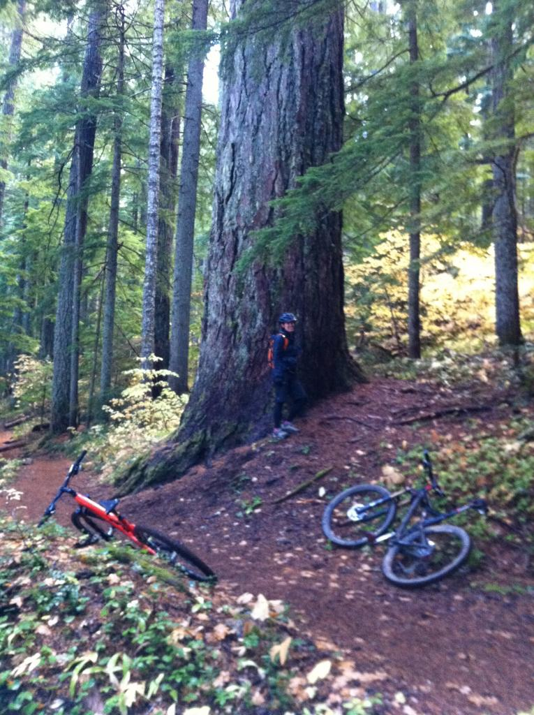 Mckenzie River Trail - Suggestions Needed-img_0075.jpg